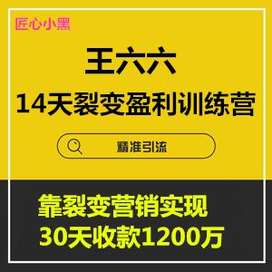 1590058549 eccbc87e4b5ce2f - 王六六·14天裂变盈利系统训练营,靠裂变营销实现30天收款1200万
