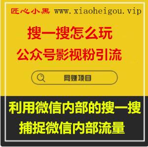 1590248846 c4ca4238a0b9238 - 公众号影视粉引流,利用微信内部的搜一搜捕捉微信内部流量(完结)