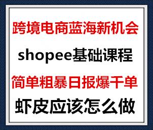 1594160996 c81e728d9d4c2f6 - 2020跨境电商蓝海新机会-shopee基础课程:简单粗暴日报爆千单(27节课)