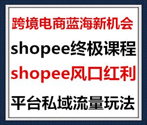 1595321668 c4ca4238a0b9238 - 2020跨境电商蓝海新机会-shopee大卖特训营:高阶终极课程(16节课)