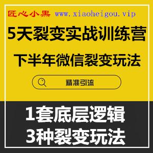1596494473 c81e728d9d4c2f6 - 零一裂变《5天裂变实战训练营》1套底层逻辑+3种裂变玩法,2020下半年微信裂变玩法
