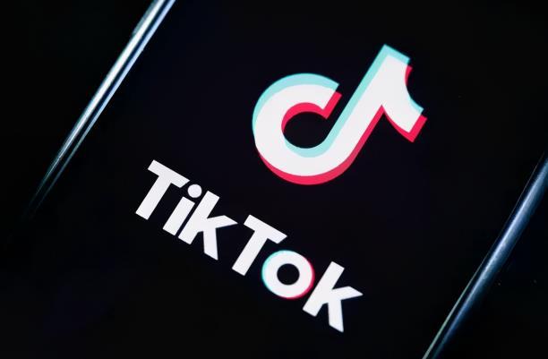 龟课·TikTok变现实战训练营线上第4期,0基础教你搬运视频,获得热门赚美金!